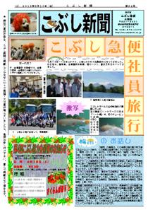 こぶし新聞2016年6月号
